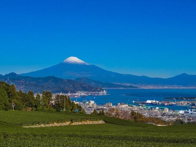 静岡県のホームページ制作