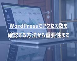 【解説】WordPressでアクセス数を確認する方法から重要性まで