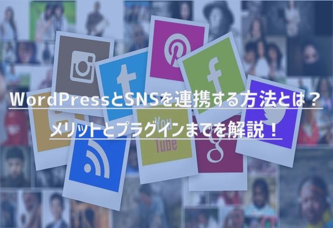 WordPressとSNSを連携させたいけどどうすればいいの