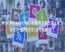 WordPressとSNSを連携する方法とは?メリットとプラグインまでを解説!