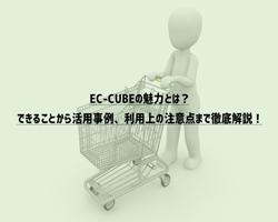 EC-CUBEの魅力とは?できることから活用事例、利用上の注意点まで徹底解説!